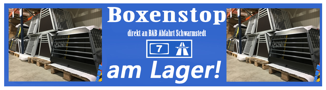 Boxenlager